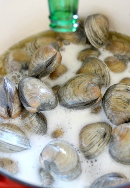 beer-clams-in-pot