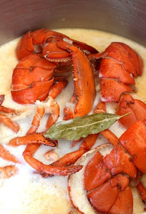 lobster-corn-chowder-broth