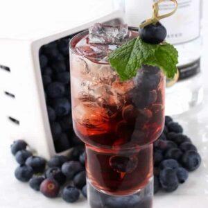 Blueberry Vodka Cooler | The Best Low Carb Vodka Drink Recipe