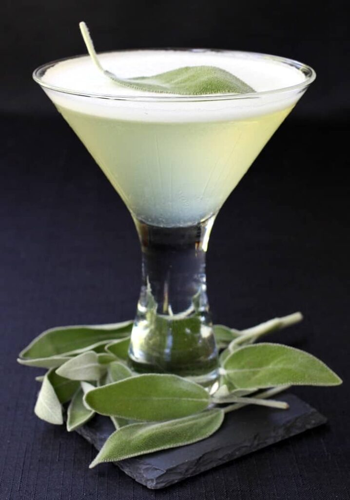 sage-gin-martini-single