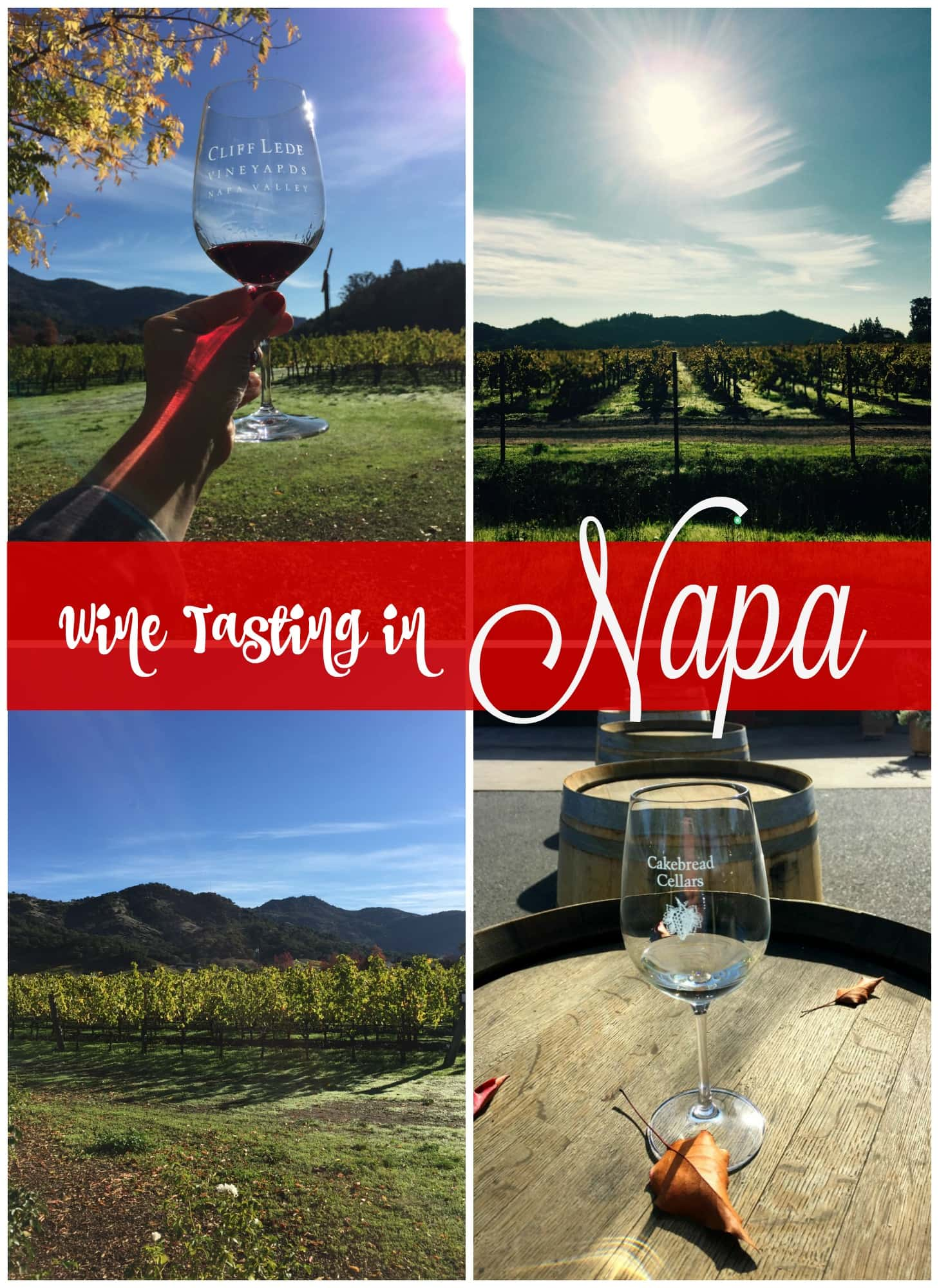 Wine Tasting In Napa Mantitlement