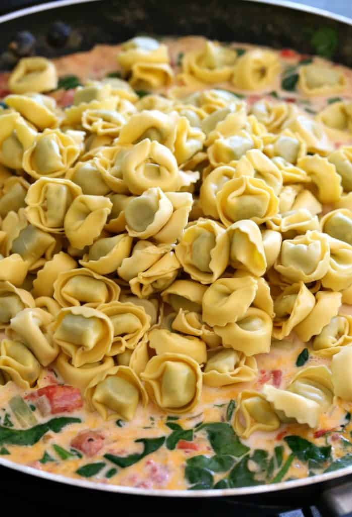 Fresh tortellini in skillet with sauce
