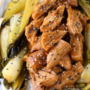 Slow Cooker Nutty Asian Pork with bok choy