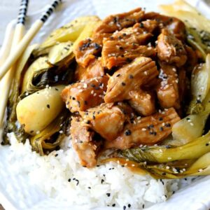 Slow Cooker Nutty Asian Pork