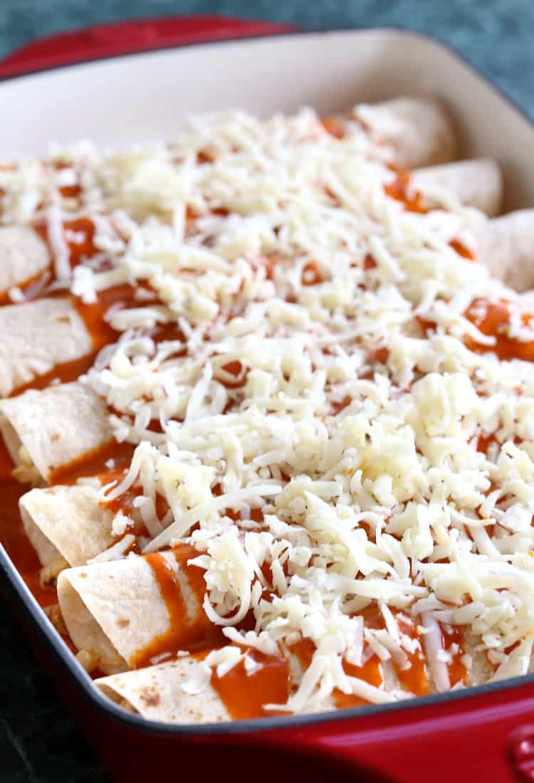 Chicken enchiladas in baking dish before baking