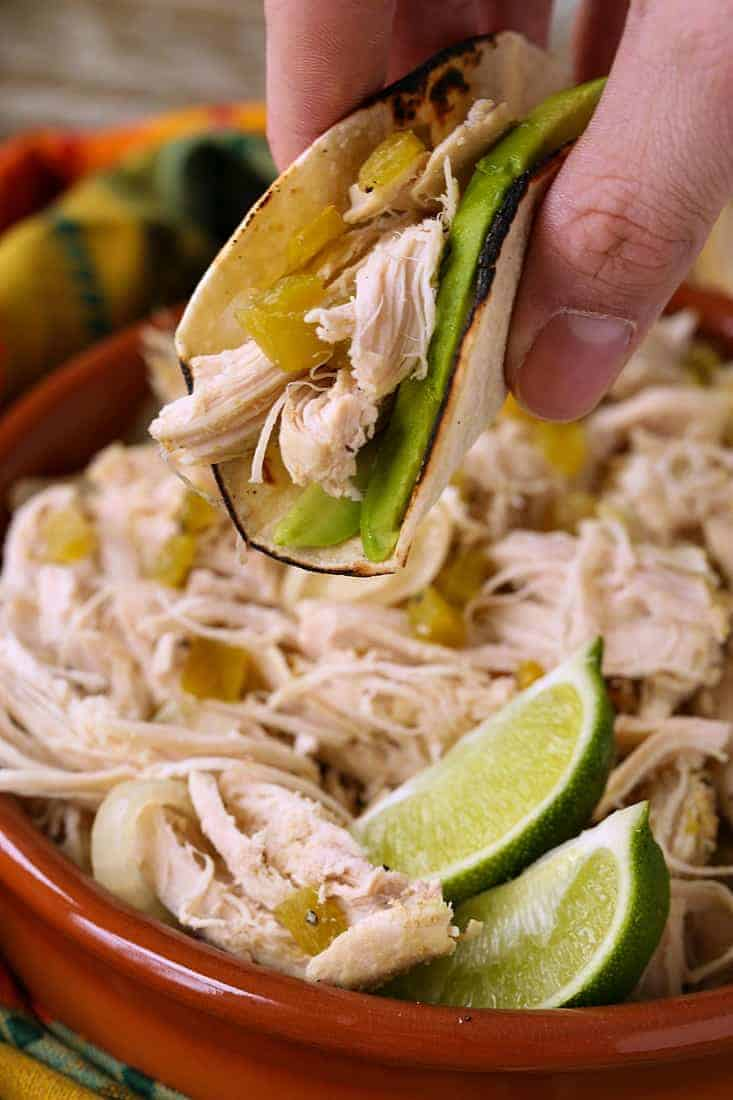 Slow Cooker Mexican Chicken in a taco with avocado