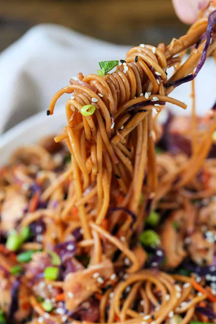 Teriyaki noodles recipe with vegetables and chicken