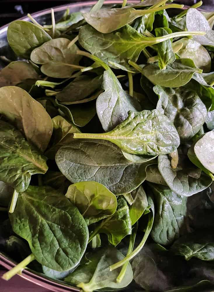 fresh spinach being used to make creamed spinach recipe