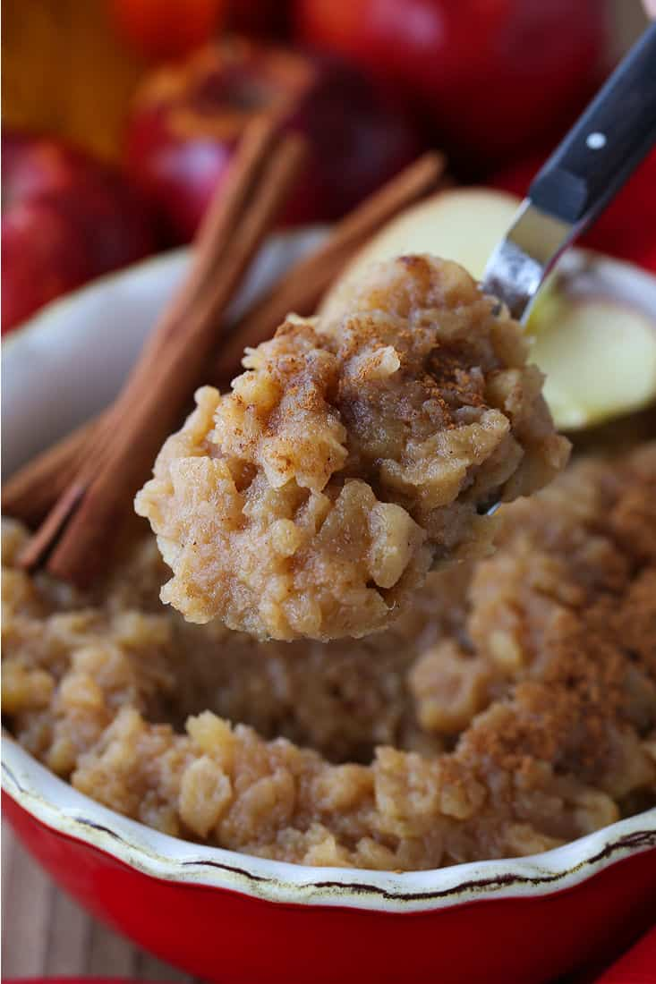 Homemade applesauce on a serving spoon with cinnamon